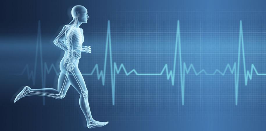 Sportkardiologie